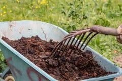 Concime: bio- fertilizzante naturale organico in una carriola di ruota con la forca Vita dell'azienda agricola immagini stock