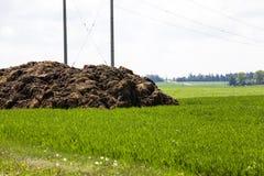 Concime per fertilizzante fotografie stock