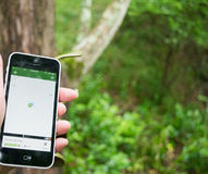 Conclusion du geocache avec le téléphone portable APP Photo libre de droits