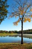 Conclusione dell'autunno Fotografie Stock