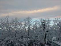 Conclusione dell'inverno Fotografia Stock