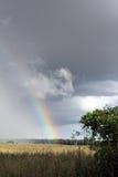 Conclusione variopinta alla pioggia Fotografia Stock