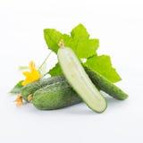 Concombre avec des lames Photos stock