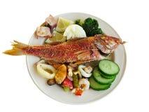 Concombre cuit de calmar de moule de poissons et de fruits de mer Photos stock