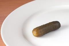 Concombre d'épice image stock