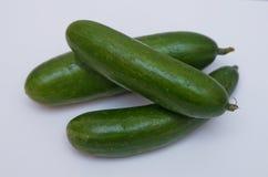 Concombre d'isolement sur le fond blanc Nourriture saine Les concombres verts d'isolement sur le fond blanc Photo stock