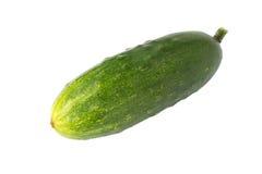 Concombre frais Image libre de droits