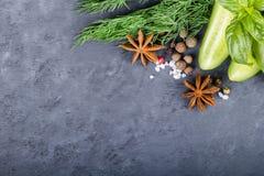 Concombre, herbes et épices sur le fond noir Photos libres de droits