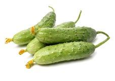Concombre juteux vert images stock
