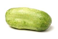 Concombre juteux vert photos libres de droits