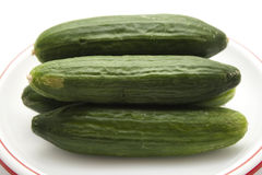 Concombre vert Image stock