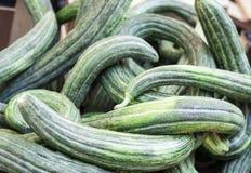Concombre vert frais de courgettes de courgette sur le marché de fruit, Catane, Sicile, Italie image libre de droits