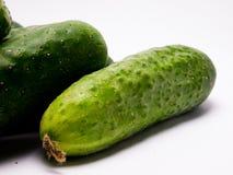 Concombre vert frais sur le fond blanc photos libres de droits