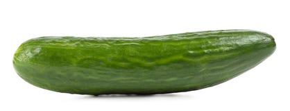 Concombre vert parfumé photo libre de droits