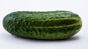 Concombre vert sur un fond blanc Photo libre de droits