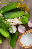 Concombres de marinage Photo stock