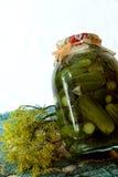 Concombres en boîte Photographie stock libre de droits