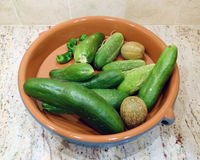 Concombres et poivrons frais du jardin Images stock