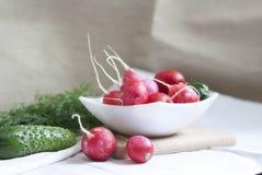 Concombres, radis et herbes Photo stock