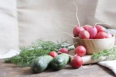 Concombres, radis et herbes Photo libre de droits