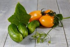 Concombres verts frais Photographie stock libre de droits