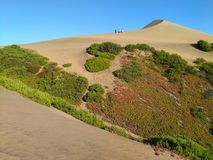 CONCON, CHILE, 18 DECEMBER 2016: view to sand dune covered with. Vegetation and tourists on top of it Royalty Free Stock Photography