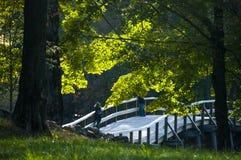 Concord Bridge Massachusetts with Lady Photographer Royalty Free Stock Photo