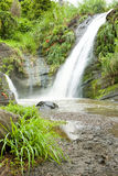 Concord Falls. In Grenada Island royalty free stock photo