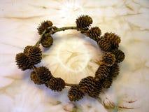 Concordance wreath Stock Image