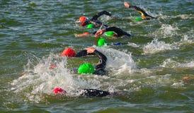 Concorrentes que nadam dentro na extremidade da fase da natação no Triathlon foto de stock