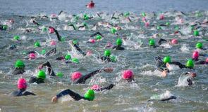 Concorrentes que nadam para fora na água aberta no início do Triathlon foto de stock