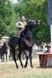 Concorrenza dei cavalieri del cavallo Immagini Stock
