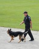 Concorrenza del cane di polizia fotografia stock libera da diritti
