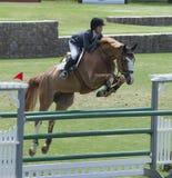 Concorrenza del cavallo Immagini Stock
