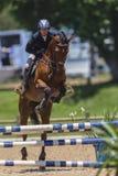Concorrenza del Equestrian del cavallo immagine stock libera da diritti