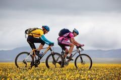 Concorrenza della bici di montagna di avventura della sorgente Immagine Stock