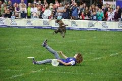 Concorrenza di Dogfrisbee a Varsavia, Polonia Immagine Stock Libera da Diritti