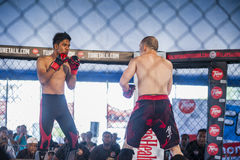 Concorrenza di kick boxing Immagini Stock Libere da Diritti