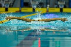 Concorrenza di nuoto Immagine Stock
