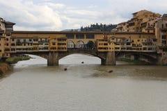 Concorrenza di rematura sul fiume di Arno Immagini Stock