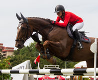 Concorrenza di salto del cavallo Immagine Stock