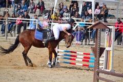 Concorrenza di salto di equitazione rifiutata cavallo Immagini Stock