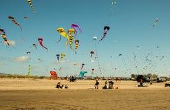 Concorrenza di volo dell'aquilone alla spiaggia Immagini Stock Libere da Diritti