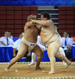 Concorrenza feroce Fotografie Stock Libere da Diritti