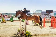 Concorsi di salto del cavallo internazionale, Russia, Ekaterinburg, 28 07 2018 immagini stock
