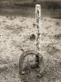 Concorso equino Fotografia Stock Libera da Diritti