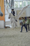 Concorso ippico bianco dell'internazionale delle ali Cavaliere femminile su un cavallo bianco pegasus Immagini Stock Libere da Diritti