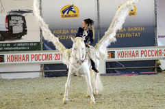 Concorso ippico internazionale Cavaliere femminile su un cavallo bianco pegasus Il bianco traversa la puleggia tenditrice volando Fotografie Stock