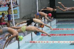 Concours de natation Photo libre de droits