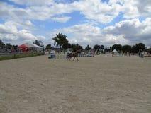 Concours hippique de la Normandie Image libre de droits